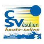320x320_3cd2a1d4c10a5_logo-csv