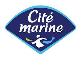 Koesio, intégrateur Sage, Microsoft Power Bi et Salesforce accompagne Cité Marine